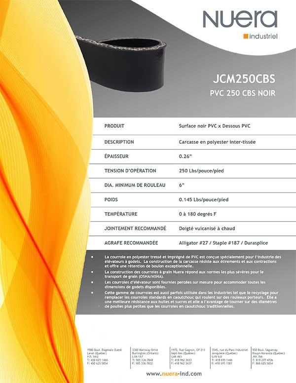 Courroie JCM250CBS
